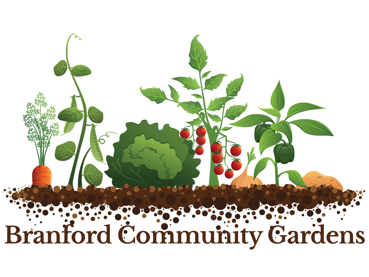 Branford Community Gardens